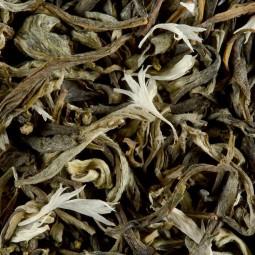 Thé blanc - Thé Blanc Myrtille
