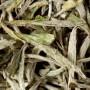Thé de Chine - Yin Zhen - Pointes Blanches