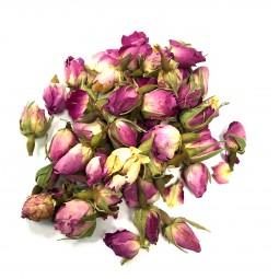Boutons de Roses